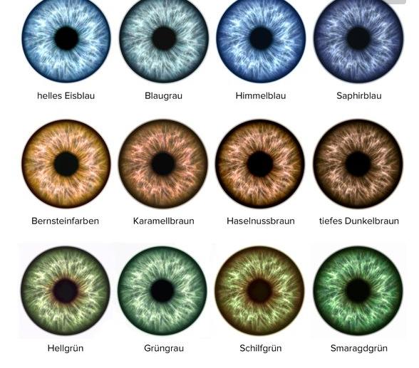 Welche Augenfarben Gibt Es