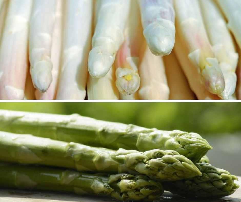 grüner und weißer Spargel im Vergleich