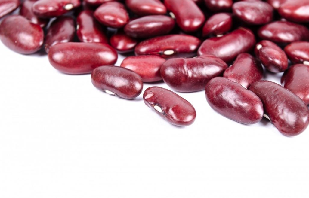 Kidney Bohnen aus der Dose