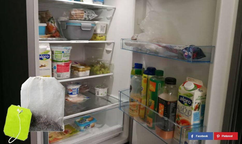 Teebeutel im Kühlschrank